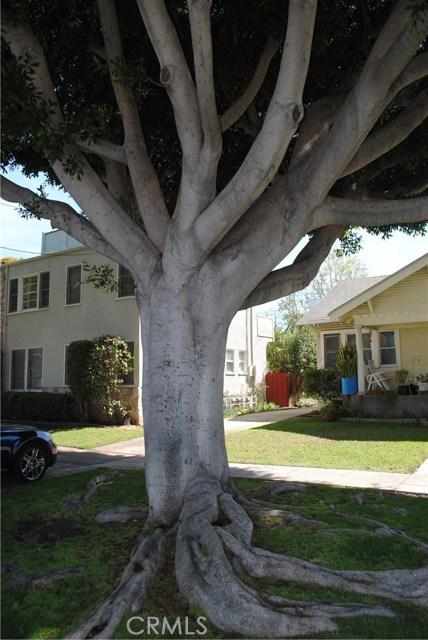 1626 California Av, Santa Monica, CA 90403 Photo 27