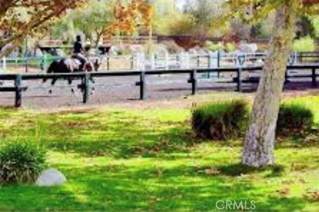11844 Apple Grove Lane, Sylmar CA: http://media.crmls.org/mediascn/cdd9215f-fbe0-4623-b94b-a98908c65994.jpg