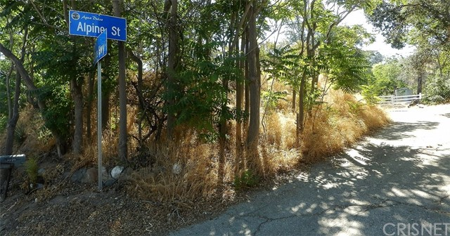Land for Sale at Alpine Street Agua Dulce, California United States