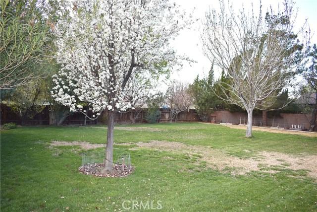 41631 55th W Street, Quartz Hill CA: http://media.crmls.org/mediascn/d6f4514a-5507-45ff-bdb5-a8489a12aa16.jpg