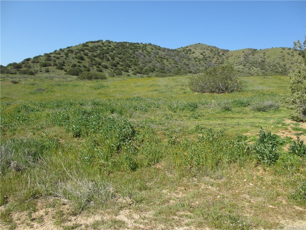 Photo of 0 CROWN VALLEY, Acton, CA 93510