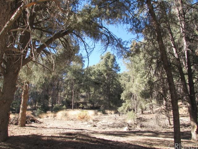 16401 Grizzly, Pine Mtn Club CA: http://media.crmls.org/mediascn/d89198a1-e6c9-449c-a89e-b12b3180b35c.jpg