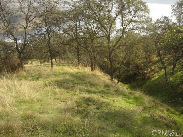 0 Sunnyslope Road, Sanger CA: http://media.crmls.org/mediascn/e01199ab-89be-4aa4-8304-6c9081126c80.jpg