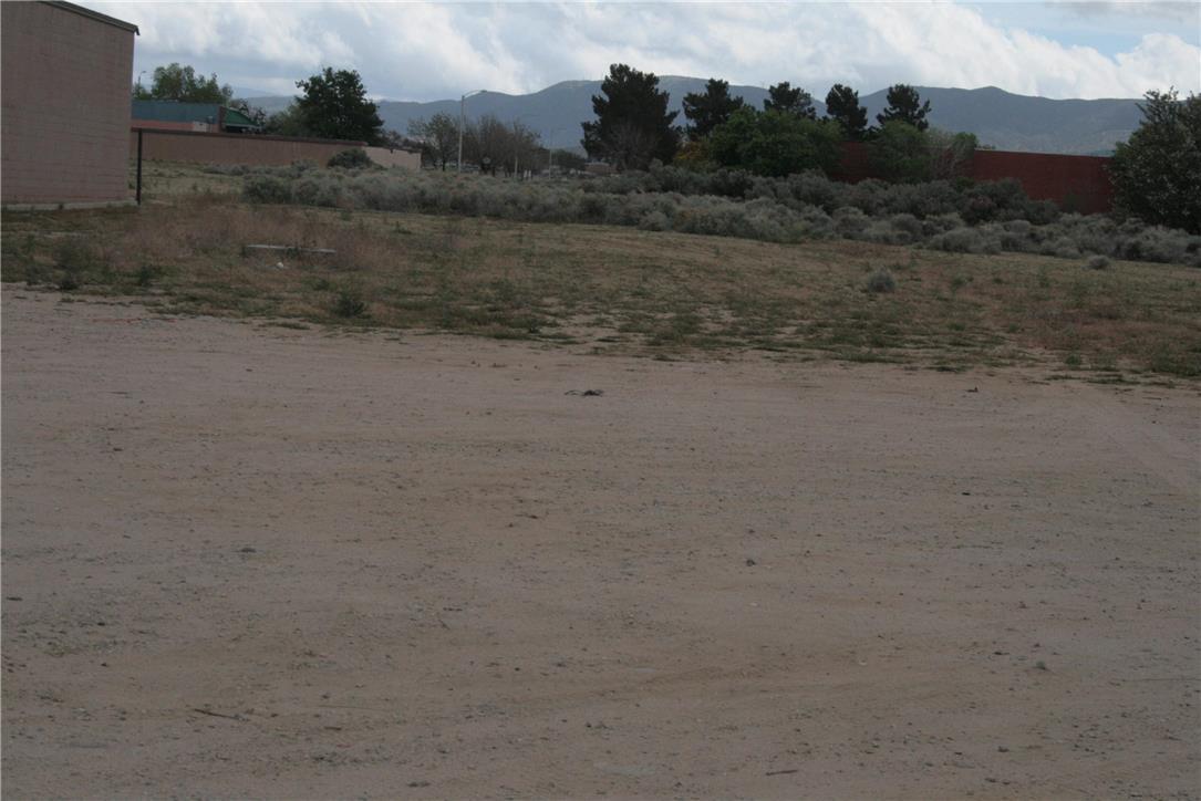 土地,用地 为 销售 在 Vac/Ave M/Vic Antelope 帕姆代尔市(棕榈谷), 93551 美国