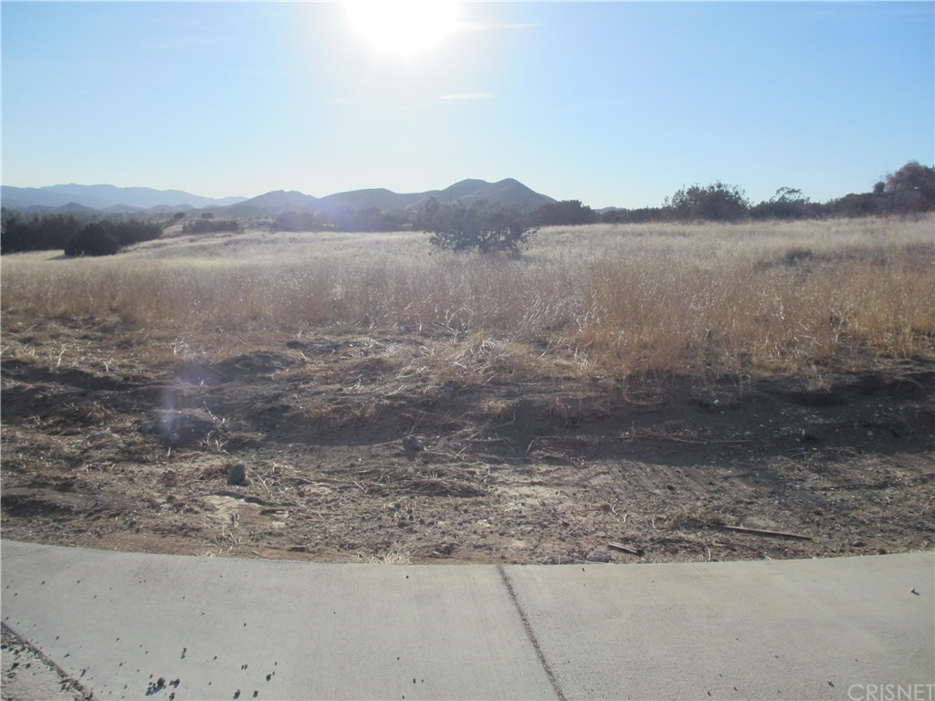 Photo of 0 Dulce Ranch/Spade Spring Canyon Road, Agua Dulce, CA