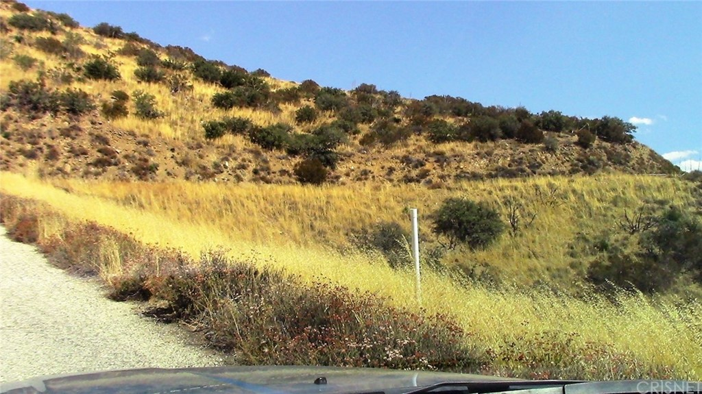 Photo of 0 SHANNON VIEW ROAD, Acton, CA 93510