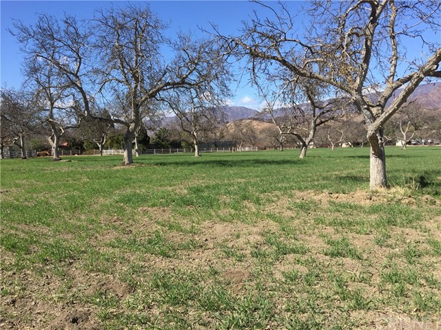 10600 Ojai Santa Paula Rd, Ojai, CA 93023 Photo