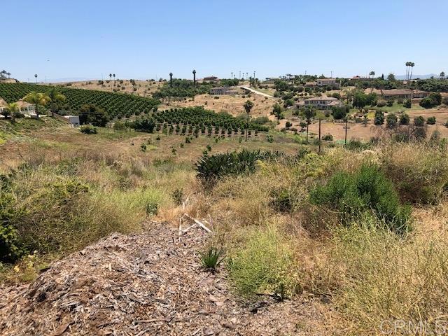 4574 Valle Del Sol, Bonsall CA: http://media.crmls.org/mediaz/0792A158-0C29-4A30-87DC-C0DE490B1840.jpg