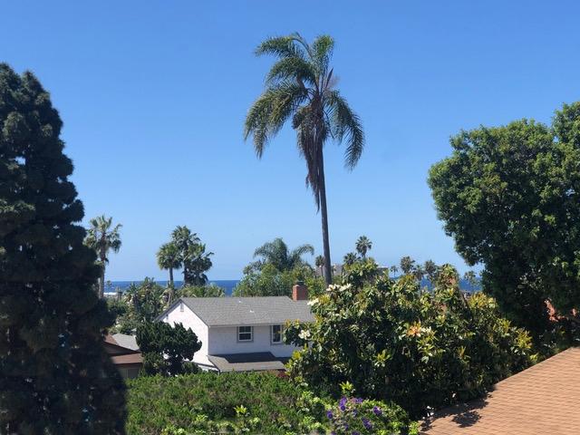 1164 Turquoise St, San Diego CA: http://media.crmls.org/mediaz/08394735-63C7-491D-B058-BAD79E7B8425.jpg