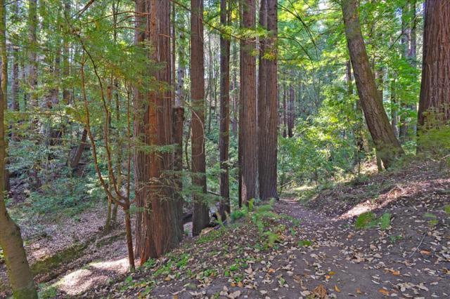 10175 Pescadero Creek Road, Outside Area (Inside Ca) CA: http://media.crmls.org/mediaz/0B303030-C7BA-4F7B-91D6-DA942D836C67.jpg
