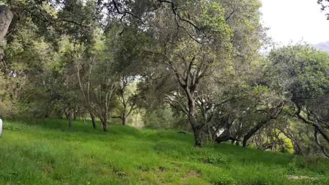 0 Pesante Road, Salinas CA: http://media.crmls.org/mediaz/0B44B797-C472-493F-8E3A-78BBD9B1BD3F.jpg