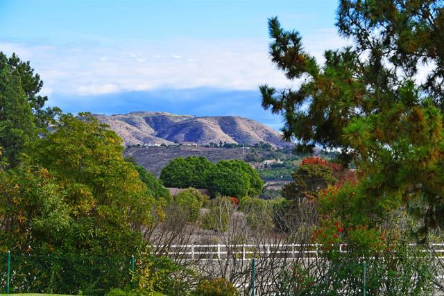 6710 El Montevideo, Rancho Santa Fe CA: http://media.crmls.org/mediaz/13DBC1DE-DF15-4CB1-8CB2-53F7FA2B9CB3.jpg
