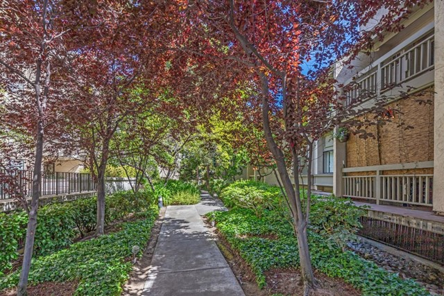 3705 Terstena Place, Santa Clara CA: http://media.crmls.org/mediaz/163C94A3-CB4E-433E-9EB9-009EC368F97C.jpg