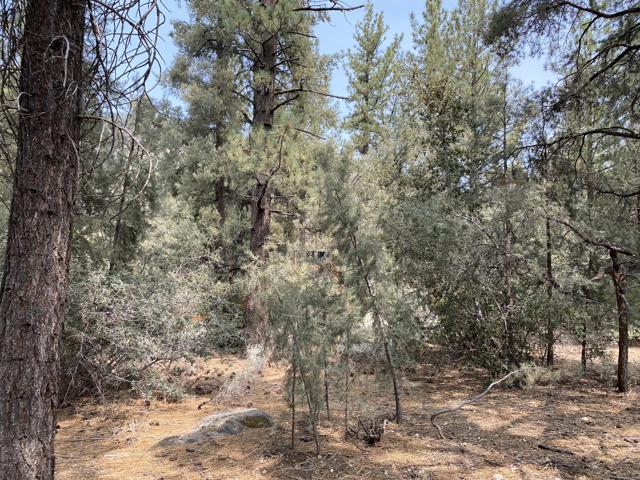 16112 Mil Potrero Fire Road,  CA: http://media.crmls.org/mediaz/1AF254F3-76D8-4C12-8941-78C1E157B109.jpg