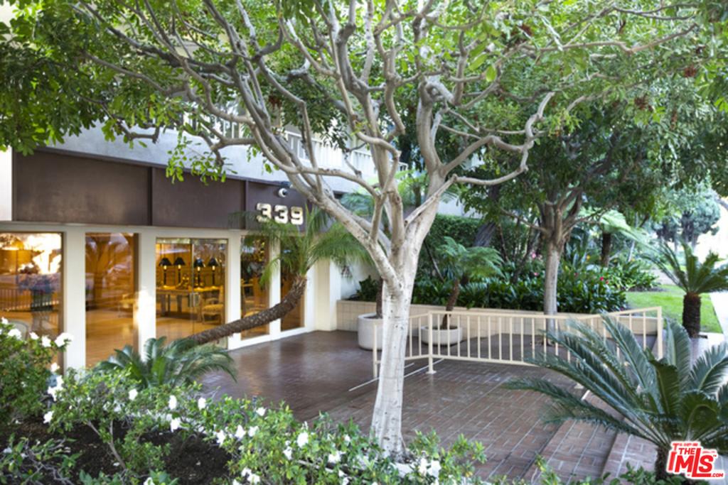 339 N PALM Drive # 202 Beverly Hills CA 90210