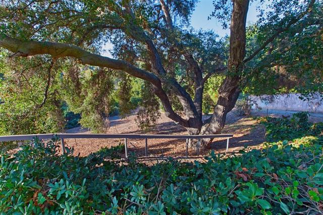 1236 Hillside Dr, Fallbrook CA: http://media.crmls.org/mediaz/217A84DB-2B5A-4C9C-B319-123B865DC658.jpg