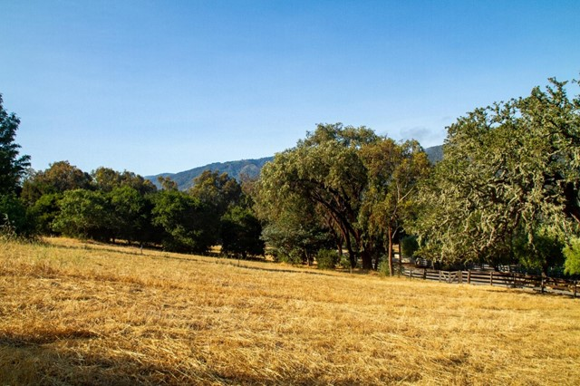 0 Encina Drive, Carmel Valley CA: http://media.crmls.org/mediaz/25D50F71-FA82-47AB-AB82-CB13AFB70C11.jpg