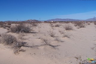Photo of home for sale at 0 AMBOY Road, 29 Palms CA