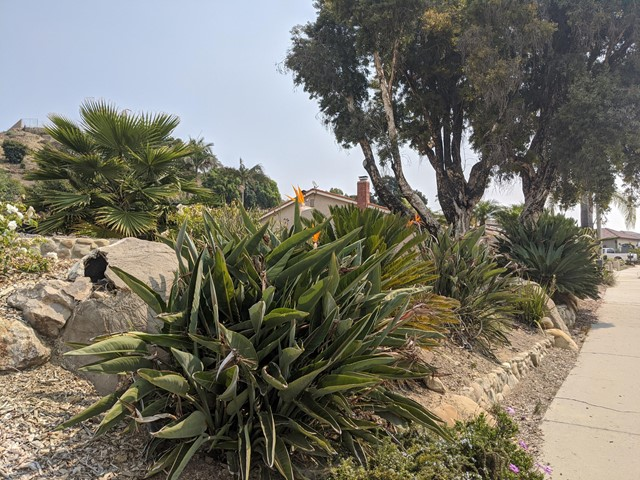 894 High Point Drive, Ventura CA: http://media.crmls.org/mediaz/2ACE9BAE-AF33-448B-B8B7-E78FF29D01C4.jpg