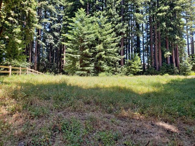 365 Henry Cowell Drive, Santa Cruz CA: http://media.crmls.org/mediaz/2D7367E0-2955-4716-AF30-D2BDBF693F54.jpg
