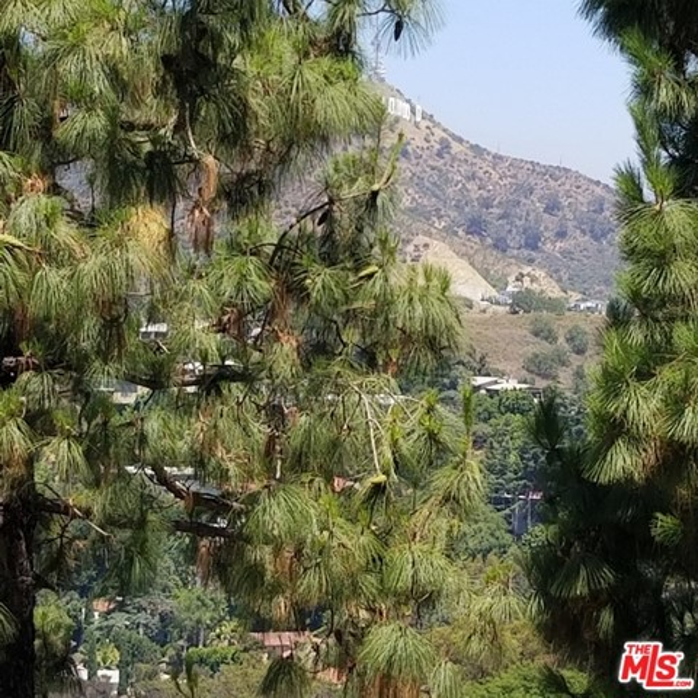 7192 Woodrow Wilson Drive, Los Angeles CA: http://media.crmls.org/mediaz/306FC276-0022-4812-BAFF-2CFD87F7B04C.jpg