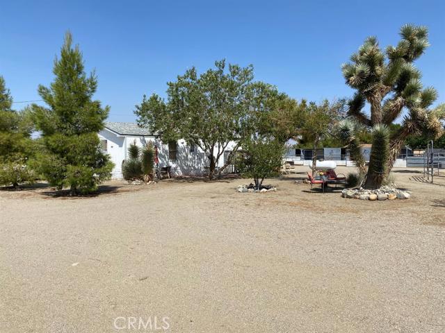 3119 Mc Millen Road,Pinon Hills,CA 92372, USA