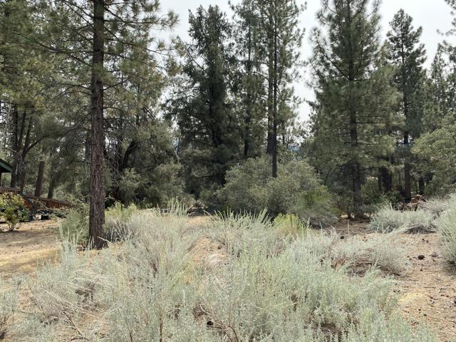 16112 Mil Potrero Fire Road,  CA: http://media.crmls.org/mediaz/35D3AC37-9BC7-4366-9D65-19A9BEE62B21.jpg