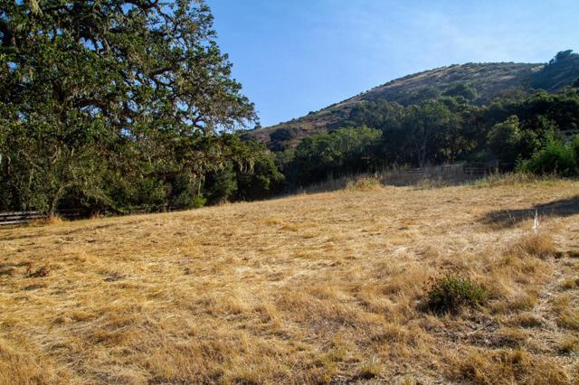 0 Encina Drive, Carmel Valley CA: http://media.crmls.org/mediaz/3AC36E34-C908-448C-B88F-856CA6079CCA.jpg