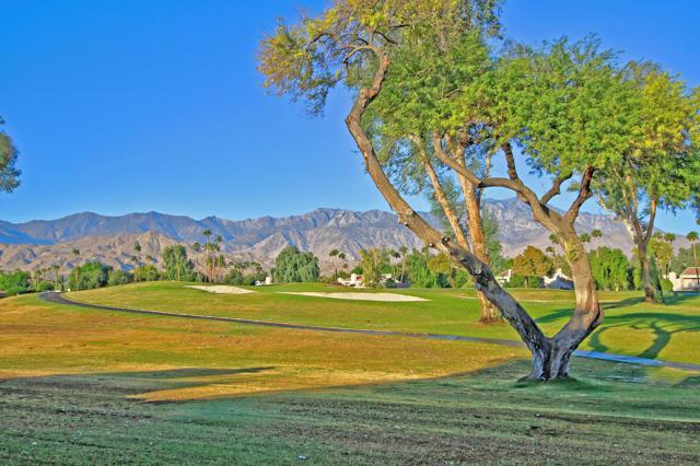 743 Inverness Drive, Rancho Mirage CA: http://media.crmls.org/mediaz/3C0A4D31-9649-42EE-94A0-84091D4E8EB9.jpg