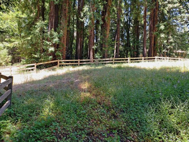 365 Henry Cowell Drive, Santa Cruz CA: http://media.crmls.org/mediaz/3C2C33D4-5030-42CB-8615-C8721B853B0F.jpg