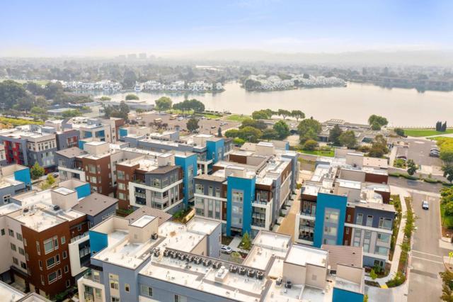 728 Eppleton Lane, Foster City, California 94404, 3 Bedrooms Bedrooms, ,2 BathroomsBathrooms,Residential Purchase,For Sale,Eppleton,ML81814650