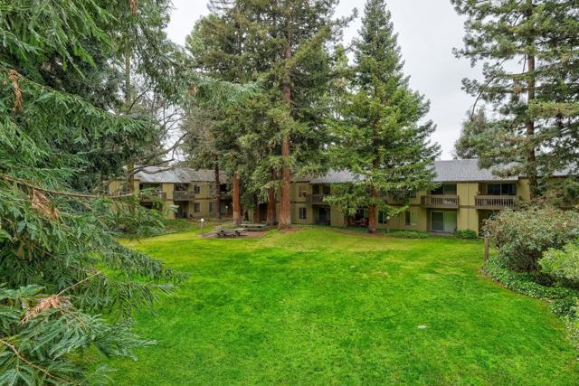 505 Cypress Point Drive, Mountain View CA: http://media.crmls.org/mediaz/40DA4F09-7035-4B6B-8ECA-ED260B6B9505.jpg