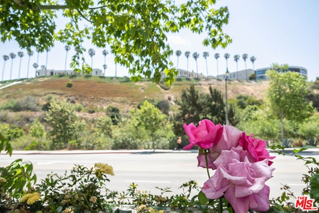 12916 Discovery, Playa Vista, CA 90094 photo 5
