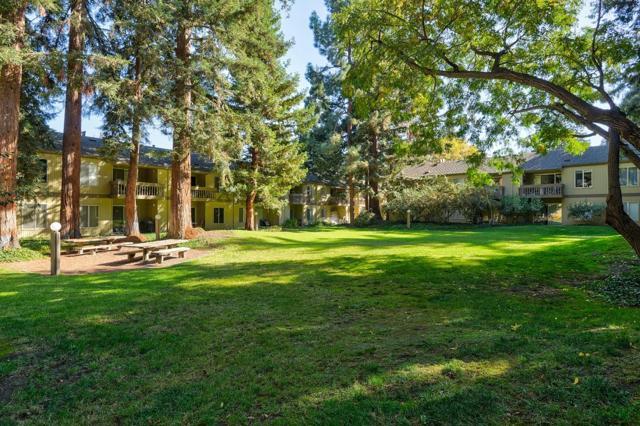 505 Cypress Point Drive, Mountain View CA: http://media.crmls.org/mediaz/4161AE18-040B-457A-8EEC-68CDB4D64FF8.jpg
