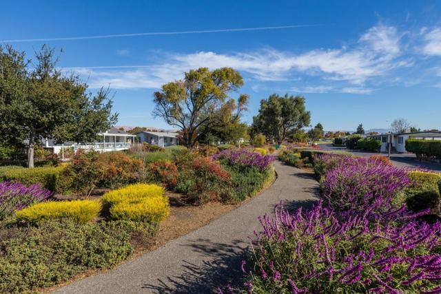 1220 Tasman Drive, Sunnyvale CA: http://media.crmls.org/mediaz/42BCCF8E-2350-48B6-A4A1-DD2945AD8506.jpg