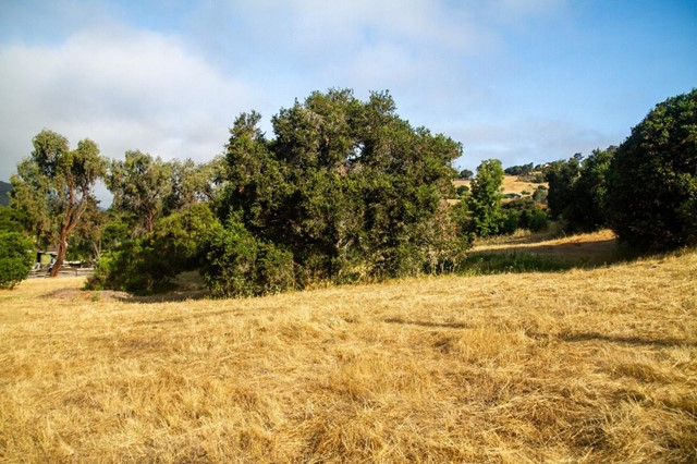 0 Encina Drive, Carmel Valley CA: http://media.crmls.org/mediaz/535FB4FC-FF28-4AD0-B085-B853EC8A21EE.jpg