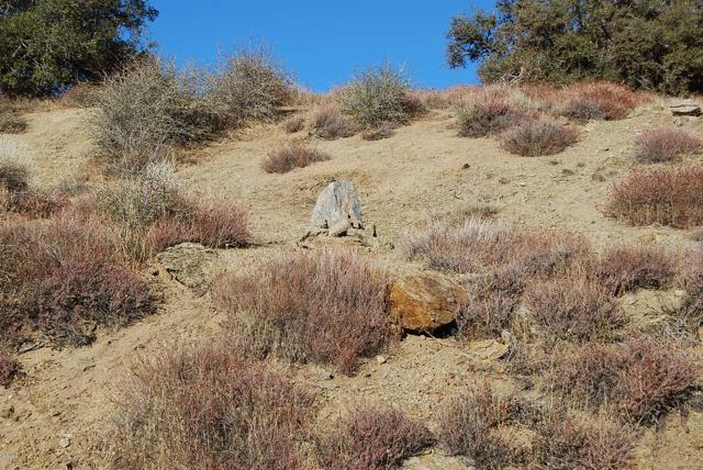 23181 Constance Way, Tehachapi CA: http://media.crmls.org/mediaz/53E126C3-420B-4B2F-BE70-68BA65E3FB25.jpg