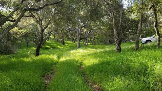 0 Pesante Road, Salinas CA: http://media.crmls.org/mediaz/569AC5B5-E421-43F4-8DCD-2F3F8C76F7A7.jpg