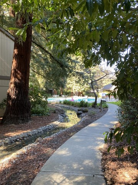 505 Cypress Point Drive, Mountain View CA: http://media.crmls.org/mediaz/5B7DC962-16BE-4274-8C12-47DD1C2A4527.jpg