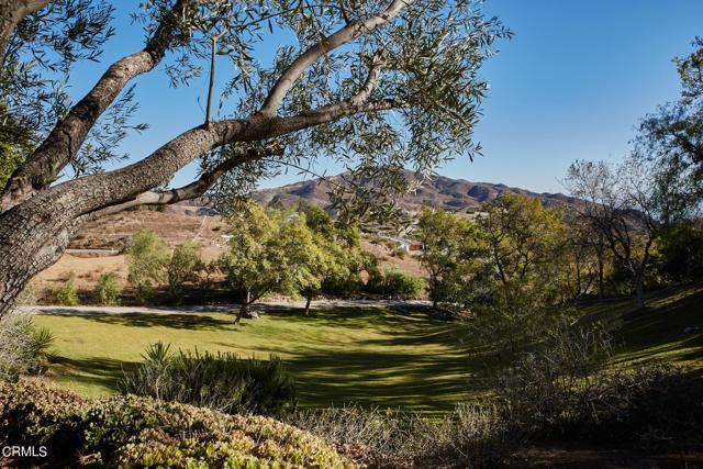 33235 Mulholland Hwy, Malibu, CA 90265 photo 26