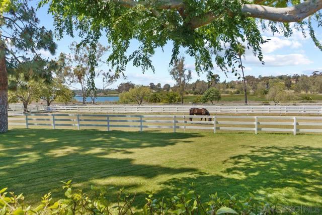 6685 Lago Lindo  Rancho Santa Fe CA 92067
