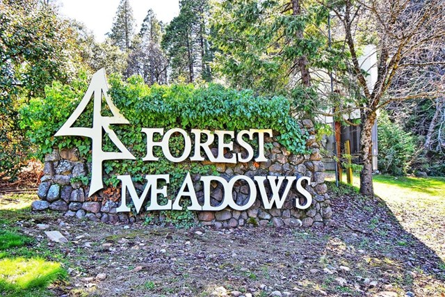398 Snowberry Court, Murphys CA: http://media.crmls.org/mediaz/6A342C96-A8E5-489D-942B-0F11470A4B63.jpg