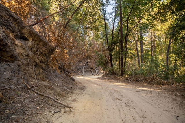 2014 Felton Quarry Road, Outside Area (Inside Ca) CA: http://media.crmls.org/mediaz/738A2249-720B-40A6-B3F5-7047331B8733.jpg