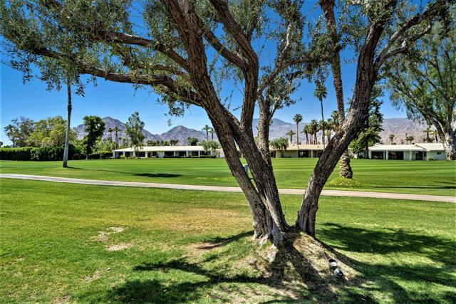 78255 Hacienda Drive, La Quinta CA: http://media.crmls.org/mediaz/80A59D71-687F-4CDD-9A83-4E80A0D01ACC.jpg