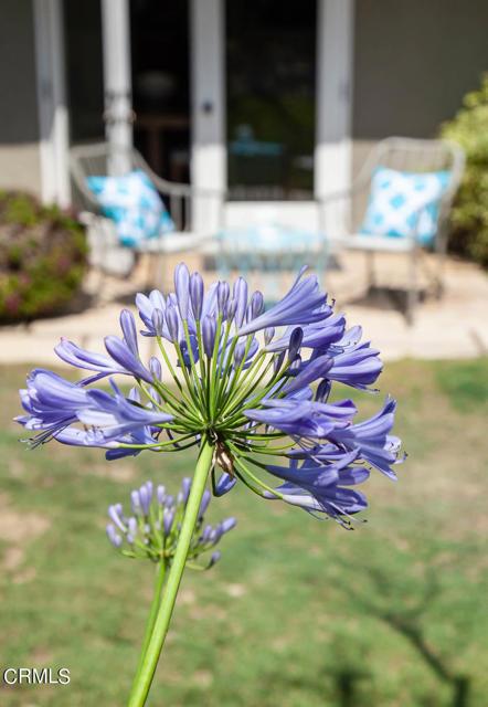 1275 Sunnycrest Avenue, Ventura CA: http://media.crmls.org/mediaz/8932BA6D-6BF7-4FB3-90CA-4C20D6255C43.jpg