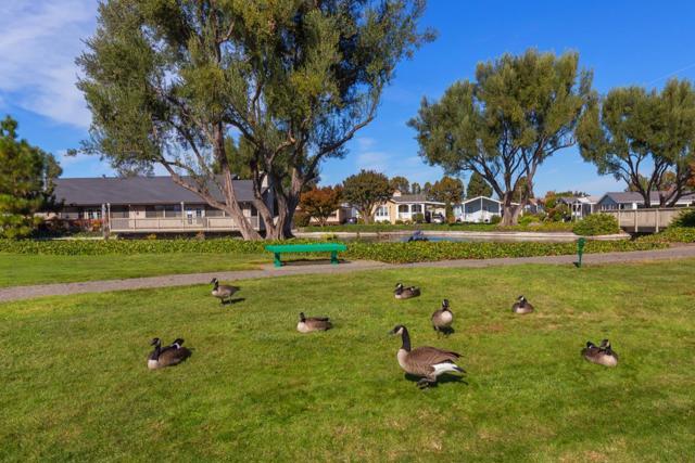 1220 Tasman Drive, Sunnyvale CA: http://media.crmls.org/mediaz/8CA38EA5-4455-4B61-9F31-1152C19A11B1.jpg