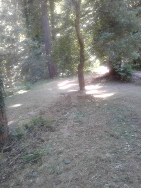0 Cathedral Drive, Aptos CA: http://media.crmls.org/mediaz/99BB572F-E86D-4D71-9D92-21D5CD31C805.jpg