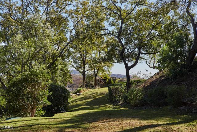 33235 Mulholland Hwy, Malibu, CA 90265 photo 25