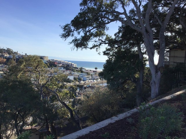 Sea Terrace Way
