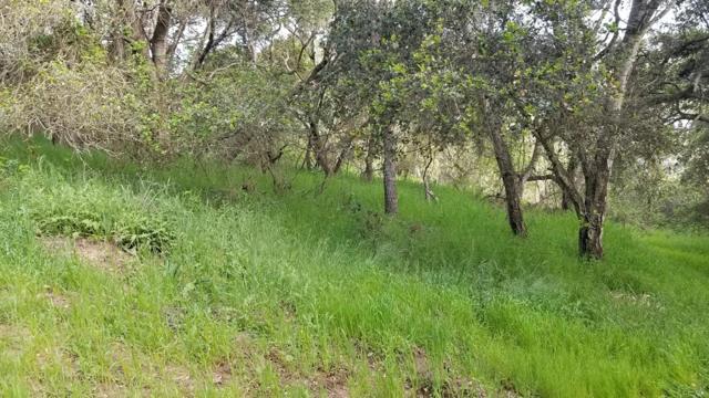 0 Pesante Road, Salinas CA: http://media.crmls.org/mediaz/B64DBFDE-4116-449D-A65C-0BAB7850F740.jpg